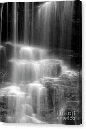 Waterfall Canvas Print by Tony Cordoza