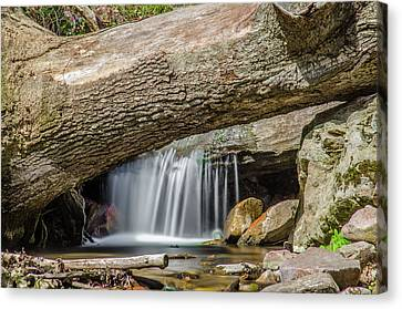 Waterfall Under Fallen Log Canvas Print by Jonah  Anderson