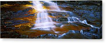 Waterfall, Wentworth Falls, Weeping Canvas Print by Panoramic Images