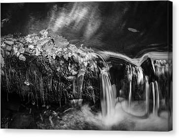 Waterfalls Childs National Park Painted Bw   Canvas Print