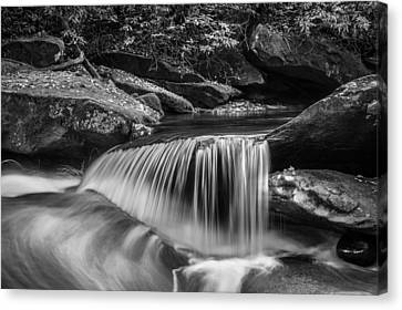 Waterfalls Great Smoky Mountains Bw  Canvas Print