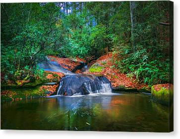 Waterfalls Great Smoky Mountains Painted  Canvas Print