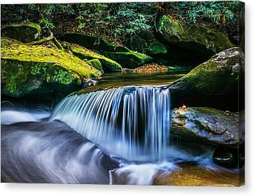 Waterfalls Great Smoky Mountains  Canvas Print