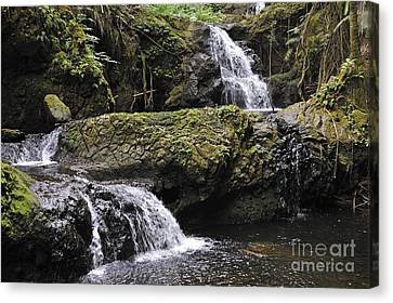 Waterfalls In Nature Canvas Print by Sami Sarkis