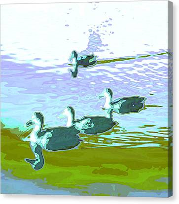 Waterfowl-abstract Canvas Print by Tom Druin