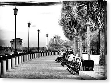 Waterfront Park Seats Canvas Print