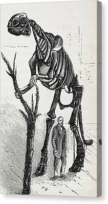 Cope Canvas Print - Waterhouse Hawkins And Hadrosaur, 1868 by Paul D. Stewart