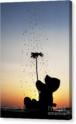 Watering A Flower Canvas Print