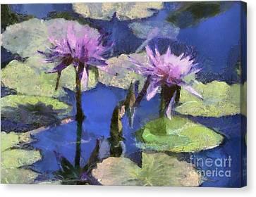 Waterlilies Canvas Print by Teresa Zieba