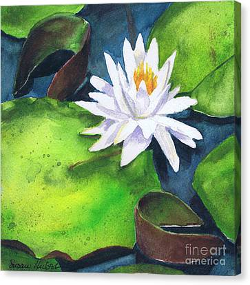 Waterlily Canvas Print by Susan Herbst