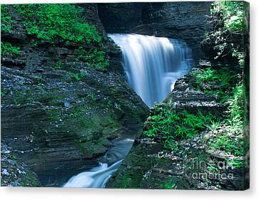 Finger Lakes Canvas Print - Watkins Glen In Spring by Steve Clough
