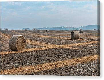 Canvas Print featuring the photograph Waupaca Straw Rolls by Trey Foerster