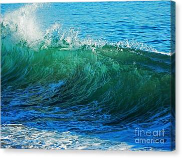Wave Action Canvas Print by Everette McMahan jr