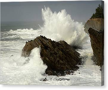 Wave At Shore Acres Canvas Print by Bob Christopher