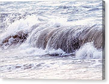 Wave In Stormy Ocean Canvas Print by Elena Elisseeva