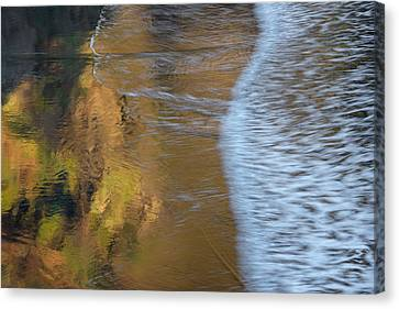 Wave Reflections 2 Canvas Print by Leland D Howard