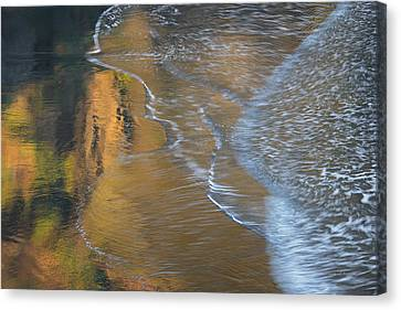 Wave Reflections 4 Canvas Print by Leland D Howard