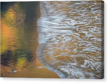 Wave Reflections 6 Canvas Print by Leland D Howard