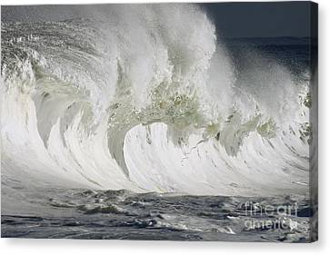 Wave Whitewash Canvas Print by Vince Cavataio