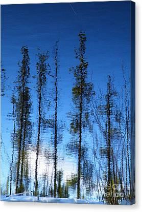 Wavering Canvas Print by Brian Boyle