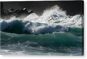 Waves Canvas Print by Barbara Walsh