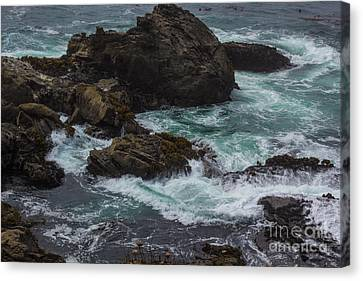 Waves Meet Rock Canvas Print by Suzanne Luft