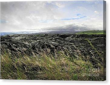 Canvas Print featuring the photograph Waves Of Clouds Sea Lava And Grass by Ellen Cotton