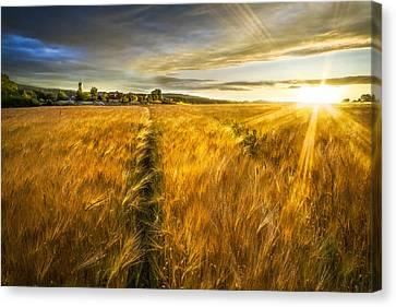 Rural Scenery Canvas Print - Waves Of Grain by Debra and Dave Vanderlaan