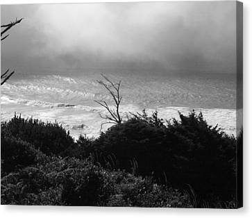 Canvas Print featuring the photograph Waves Upon The Land by Tarey Potter