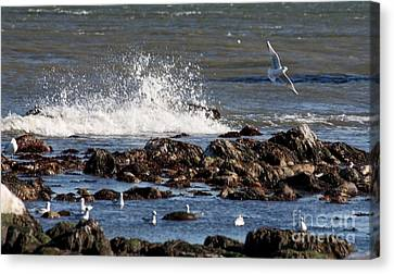Waves Wind And Whitecaps Canvas Print