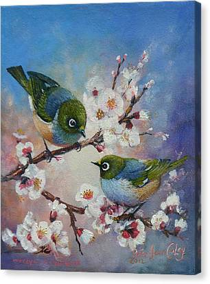 Wax Eyes On Blossom Canvas Print by Peter Jean Caley