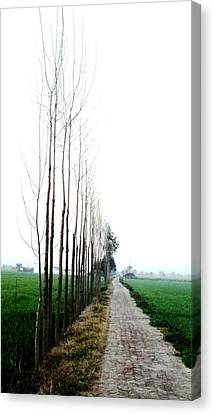 Way To Heaven Canvas Print by Jyoti Vats
