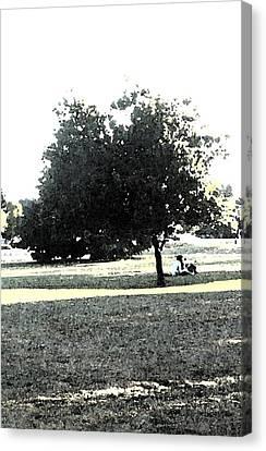 Wc Resting Tree Canvas Print by Nicki Bennett