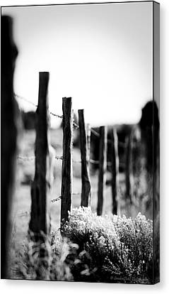 We Are All Fenced In Canvas Print