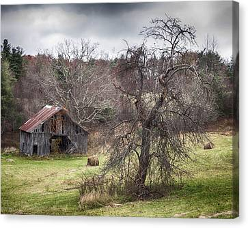 Weathered Canvas Print by Alan Raasch