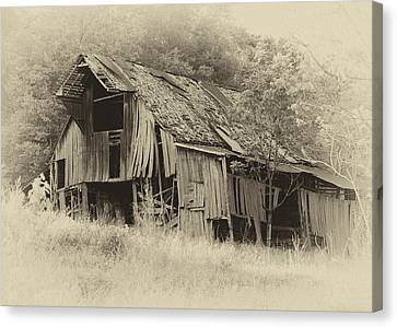 Weathered Barn  Canvas Print by Harold Rau