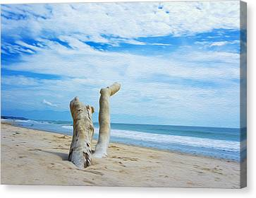 Weathered Driftwood Canvas Print by Aged Pixel