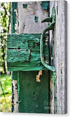 Weathered Green Paint Canvas Print by Paul Ward