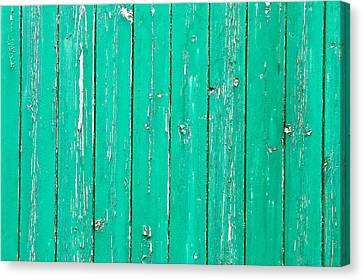 Weathered Green Wood Canvas Print by Tom Gowanlock
