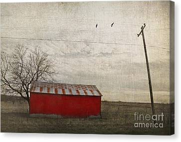 Nosyreva Canvas Print - Weathered Red Barn by Elena Nosyreva