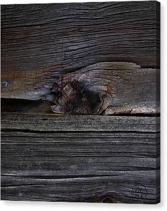 Weathered Wood - Dusk Canvas Print by Patricia Kay
