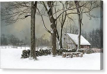 Weathering Canvas Print by Robin-Lee Vieira