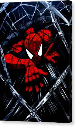 Web Crawler Canvas Print