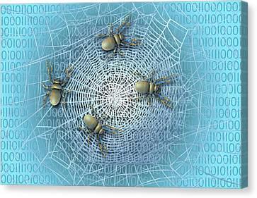 Web Crawlers Canvas Print by Carol & Mike Werner