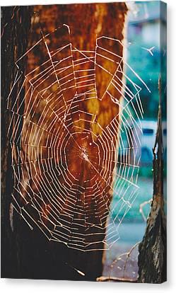 Web Work Canvas Print