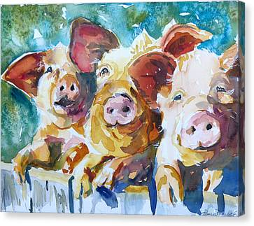 Wee 3 Pigs Canvas Print by P Maure Bausch