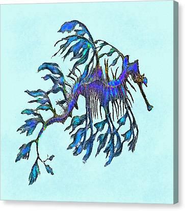 Weedy Seadragon Canvas Print by Jane Schnetlage