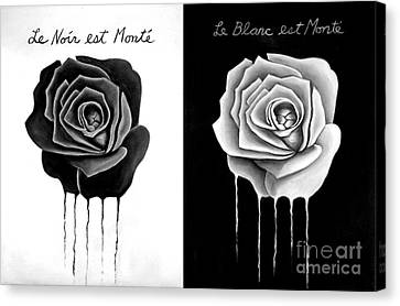 Weeping Black And White Roses Canvas Print by Darrell Ross