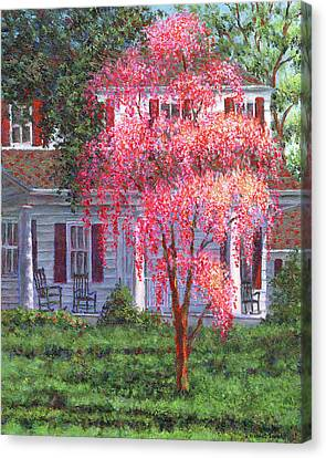 Weeping Cherry By The Veranda Canvas Print by Susan Savad