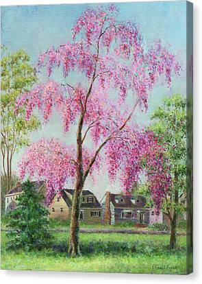 Cherry Trees Canvas Print - Weeping Cherry by Susan Savad